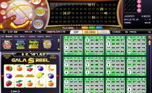 gala-bingo-80